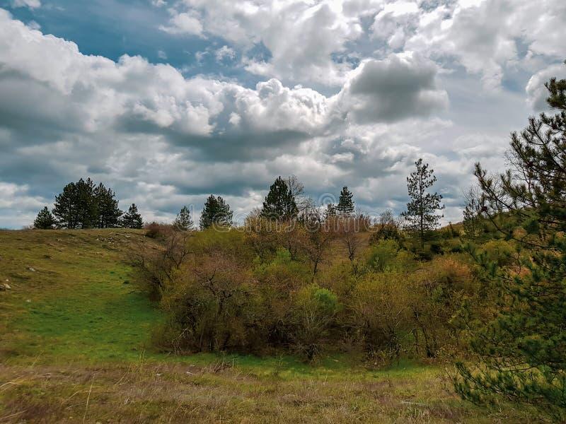Una fotografia di paesaggio meraviglioso con il prato erboso e le colline boscose immagini stock