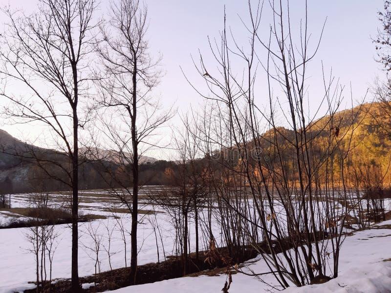 Una fotografia stupefacente dell'inverno nel villaggio fotografia stock libera da diritti