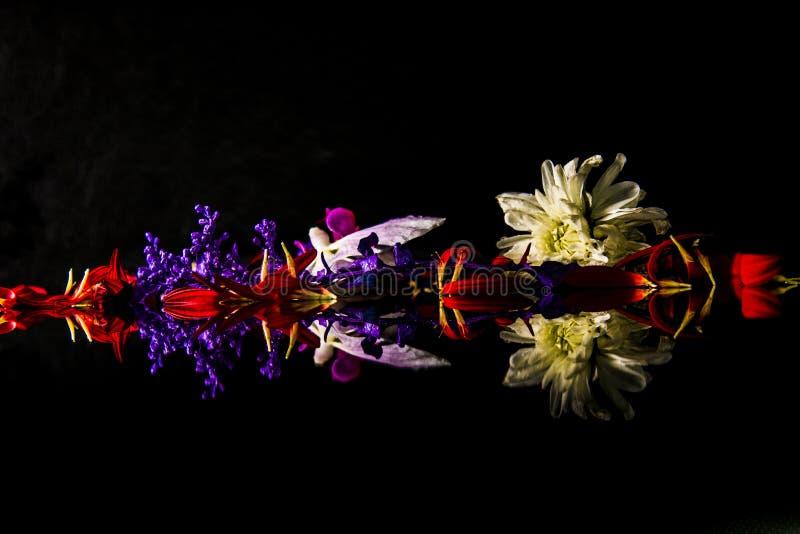 Una freccia floreale di speranza fotografia stock libera da diritti