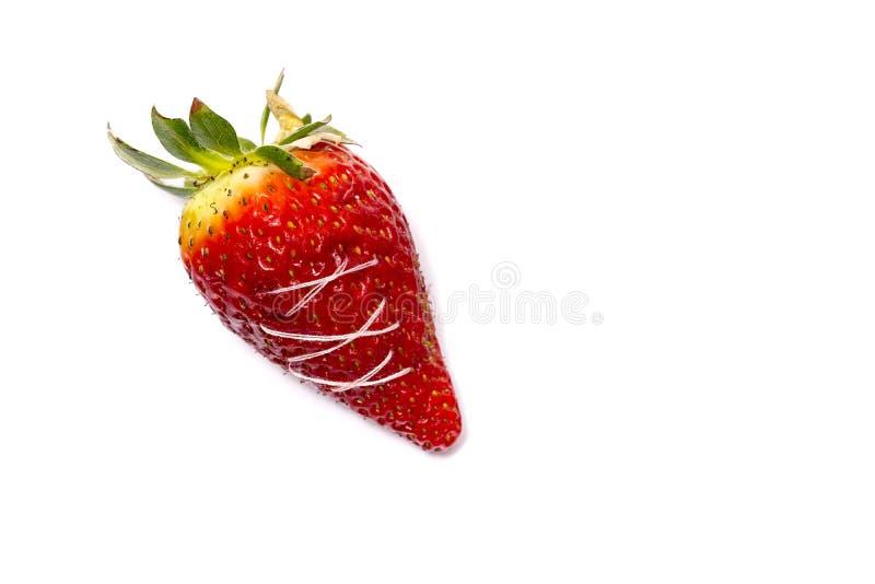 Una fresa quebrada cosida El concepto de comida sana Strawberr imagen de archivo libre de regalías