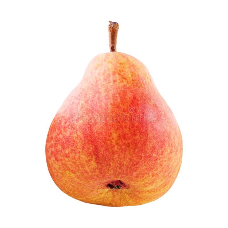 Una fruta dulce entera de la pera aislada en blanco imagen de archivo