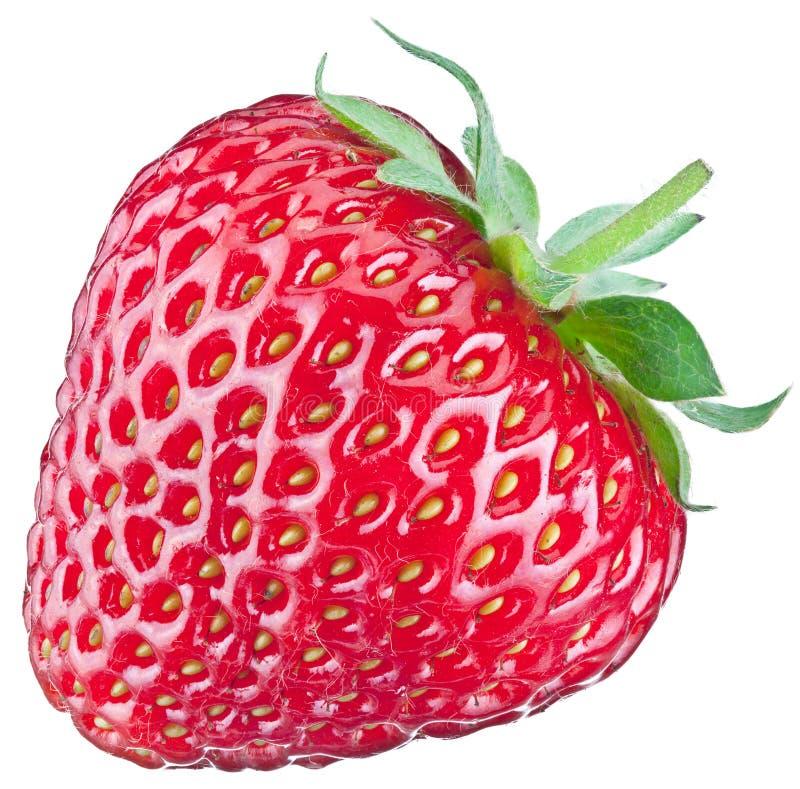 Una fruta rica de la fresa imagen de archivo