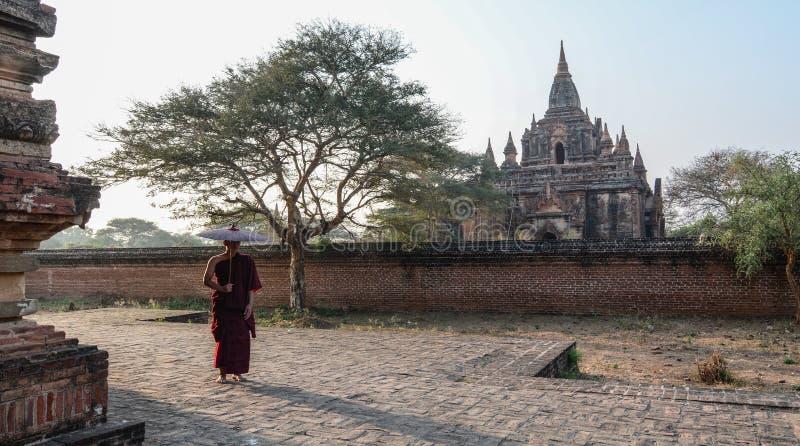 Una giovane condizione del monaco alla pagoda buddista fotografia stock libera da diritti