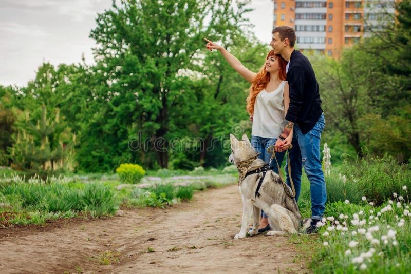 Una giovane coppia che cammina un cane nel parco fotografie stock libere da diritti