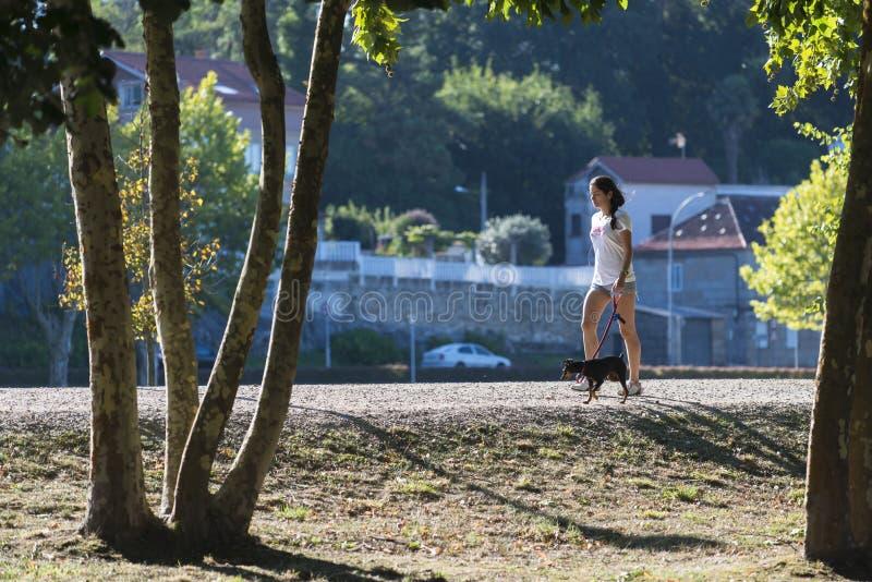 Una giovane donna cammina con il suo cane fotografie stock