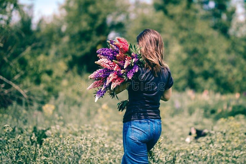 Una giovane donna cammina nel prato fra erba verde ed i lupini porpora con un mazzo dei lupini a disposizione immagini stock