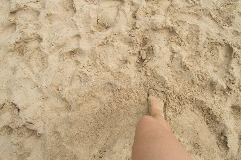 Una giovane donna che sta a piedi nudi sulla sabbia un giorno di estate soleggiato Vista superiore di bella gamba Spazio vuoto pe fotografie stock