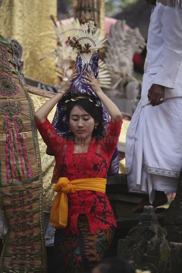 Una giovane donna di balinese che porta l'offerta principale in vestiti tradizionali su cerimonia del tempio indù, isola di Bali, immagini stock libere da diritti