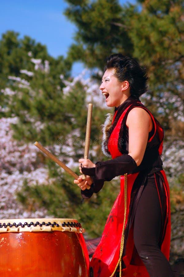 Una giovane donna dimostra l'arte antica di rullo del tamburo giapponese di Taiko immagini stock