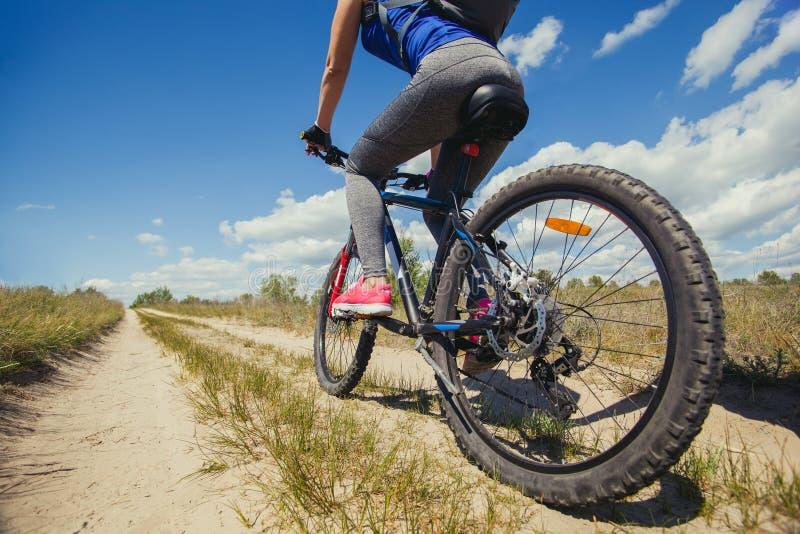 Una giovane donna - un atleta guida su un mountain bike fuori della città in un'abetaia fotografia stock libera da diritti