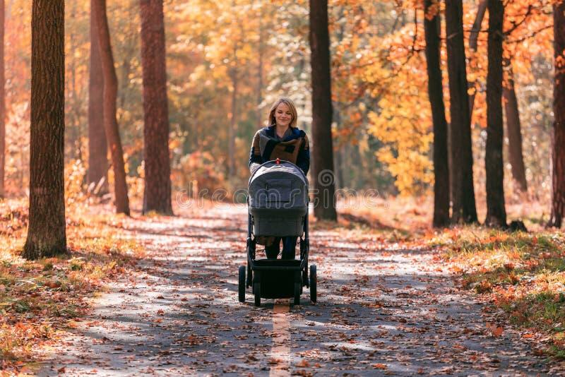 Una giovane madre con un passeggiatore cammina attraverso il parco di autunno immagine stock libera da diritti