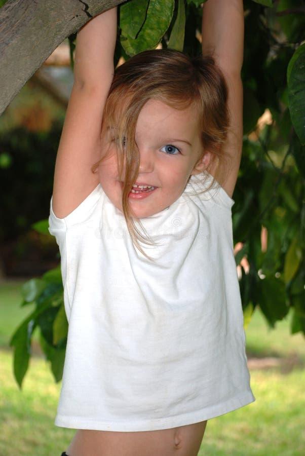 Una giovane ragazza felice pende da un albero fotografia stock