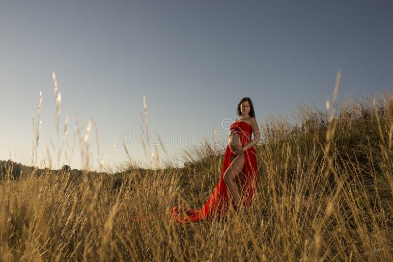 Una giovane ragazza vestita rossa incinta che sta all'aperto in erba fotografia stock libera da diritti