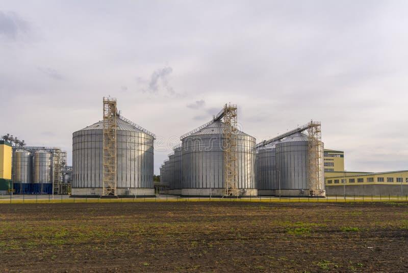 Una grande fabbrica per l'elaborazione del grano Grande elevatore nel campo immagine stock libera da diritti