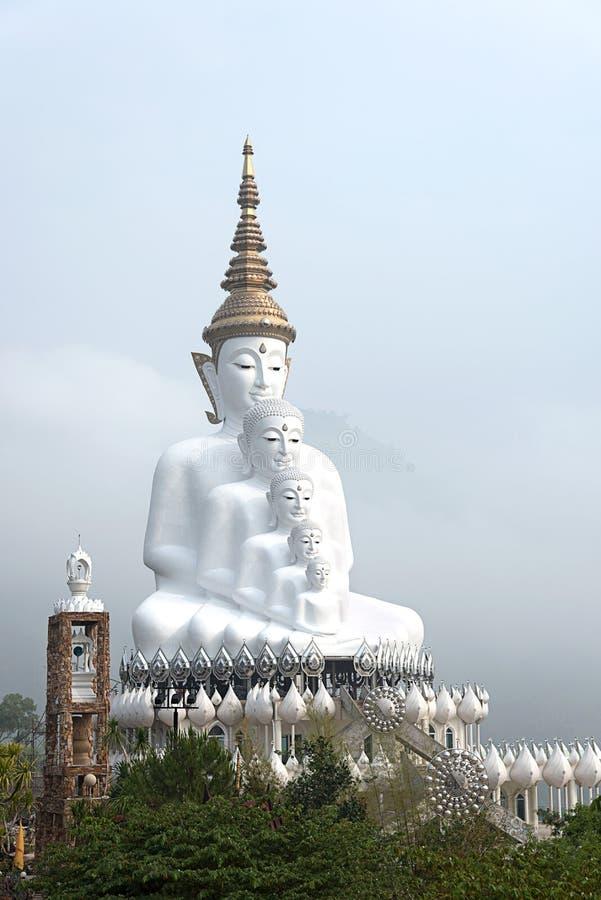 Una grande immagine di 5 bianchi di Buddha immagine stock
