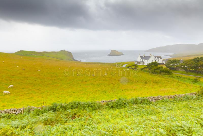 Una granja típica con la cría de las ovejas en la isla de Skye imagenes de archivo