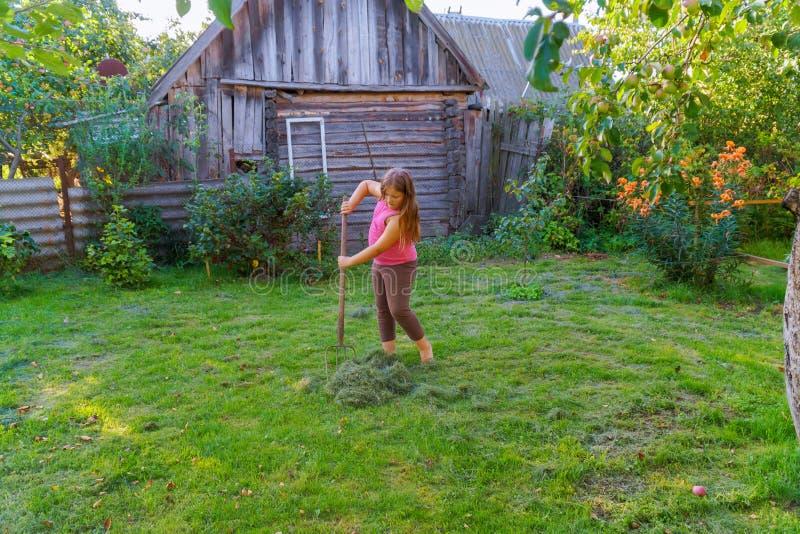 Una guadaña de la niña para segar y recoger la hierba con el equipo adicional imagen de archivo