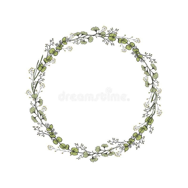 Una guirnalda de las ramas del Ginkgo, eucalipto Ejemplo del vector del color aislado en el fondo blanco Gr?fico de la mano ilustración del vector