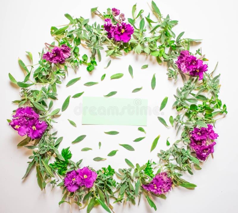 Una guirnalda de violetas en un fondo blanco Marco redondo de flores púrpuras y de la hierba fresca Flores del verano Endecha pla stock de ilustración
