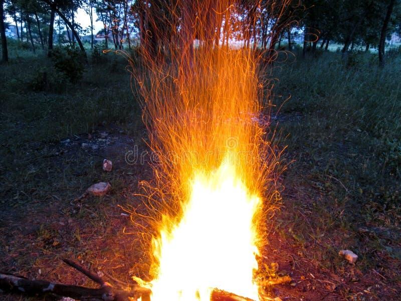 Una hoguera en un bosque oscuro chispea por la tarde que forma una multitud de hilos anaranjados de rastros de chispas foto de archivo