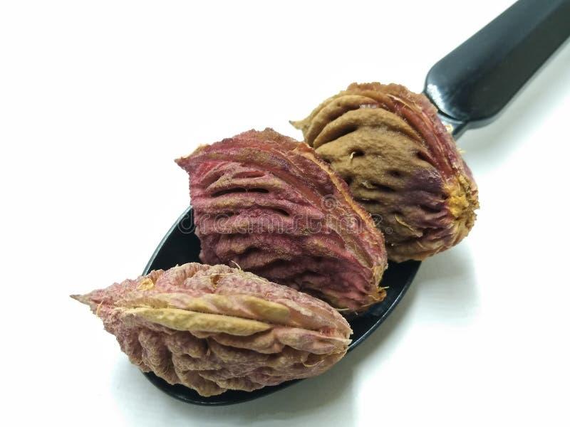 Una imagen de la semilla del melocotón en la cuchara negra, fotografía de archivo libre de regalías