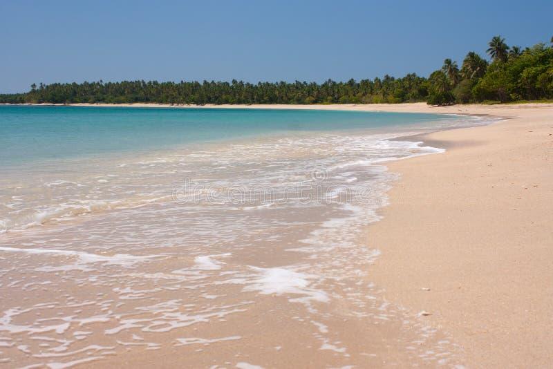 Una imagen perfecta de las vacaciones de una playa y de palmeras en Tonga tropical fotos de archivo libres de regalías