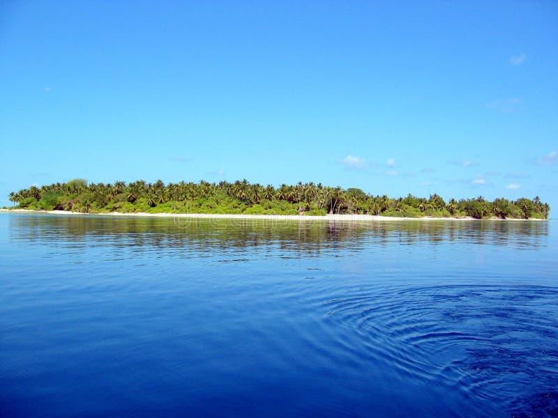 Una isla de Maldives fotos de archivo libres de regalías