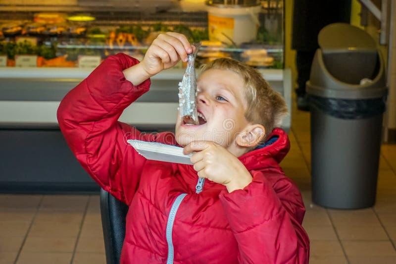 Una juventud que come un arenque Zoute Haring la manera tradicional en la ciudad de Elburg en los Países Bajos, fotografía de archivo