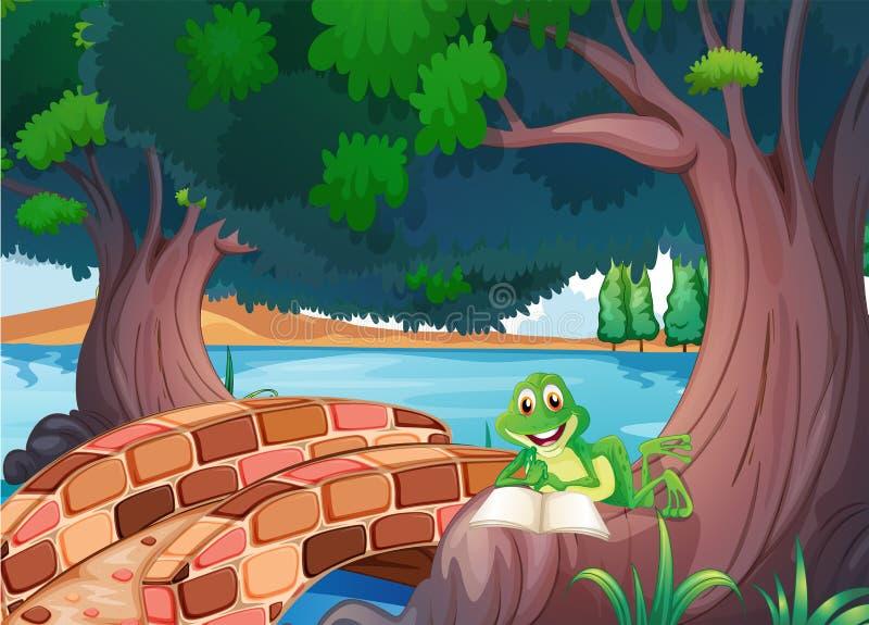 Una lectura de la rana debajo del árbol al lado de un puente stock de ilustración