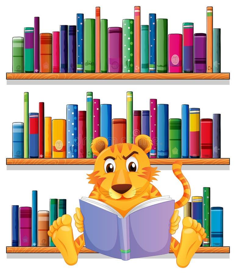 Una lectura enojada del tigre delante de los estantes de madera con los libros stock de ilustración