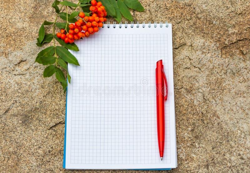 Una libreta del papel ajustado con una primavera blanca con un bolígrafo rojo miente en una superficie de piedra amarilla y tiene foto de archivo
