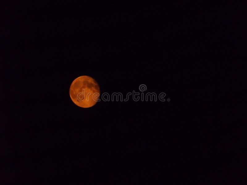 Una luna del penny immagine stock