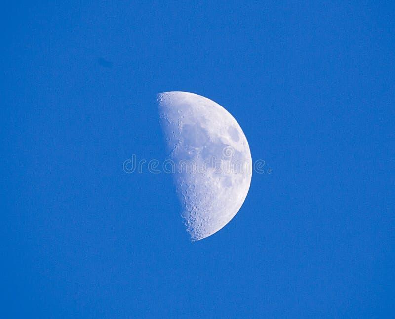Una luna del primo trimestre contro un cielo blu fotografia stock libera da diritti
