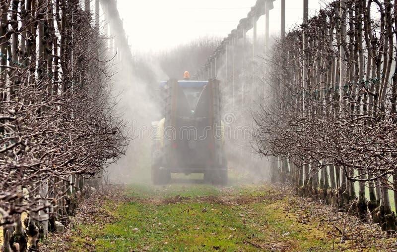 Una máquina del rociador asperja los pesticidas en un manzanar en los primeros días de primavera Visión posterior imagenes de archivo