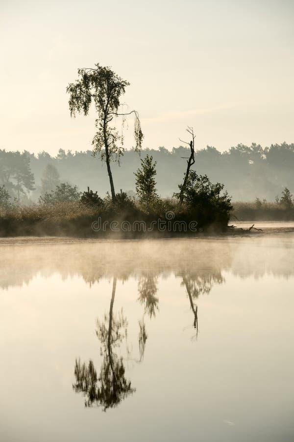 Una mañana brumosa en el agua foto de archivo libre de regalías