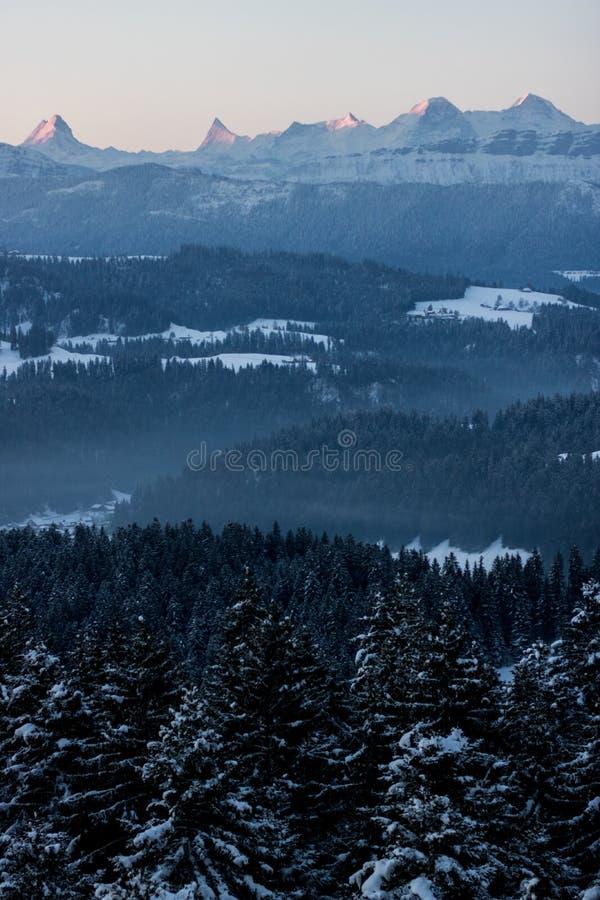 Una mañana del invierno en Suiza fotografía de archivo libre de regalías