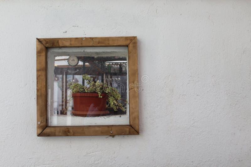Una maceta en la pared imágenes de archivo libres de regalías