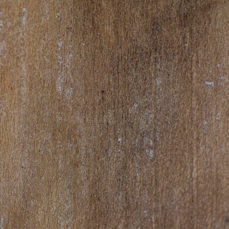 Una macro de un pedazo de madera foto de archivo