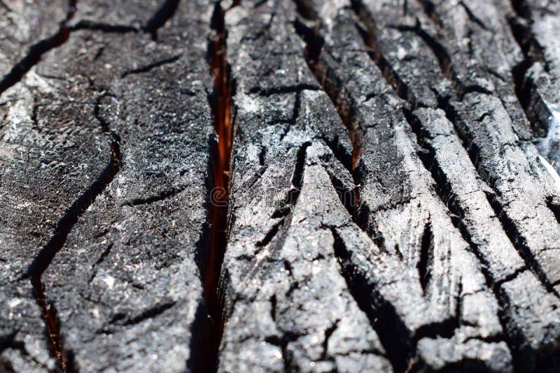 Una madera carbonizada en un corte Madera chamuscada por el fuego imagen de archivo libre de regalías