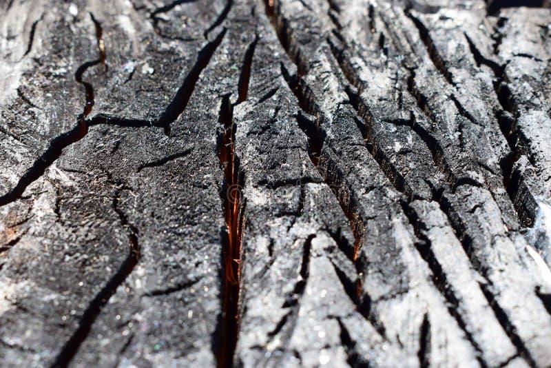 Una madera carbonizada en un corte Madera chamuscada por el fuego imágenes de archivo libres de regalías