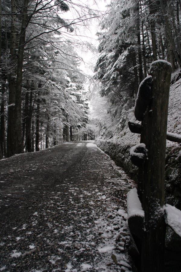 Una manera en la nieve fotografía de archivo libre de regalías