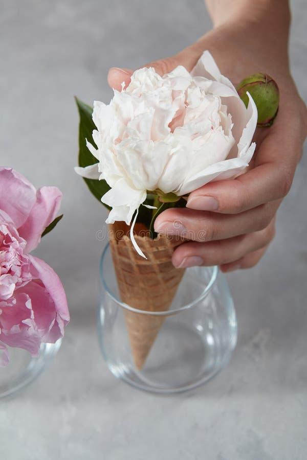 Una mano de la mujer sostiene una taza de la galleta con un pión blanco delicado en una taza de cristal en una tabla de mármol gr fotos de archivo libres de regalías