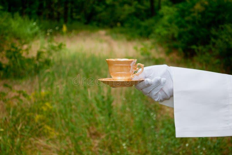 Una mano del ` s del cameriere in un guanto bianco tiene una tazza beige e un piattino all'aperto immagini stock
