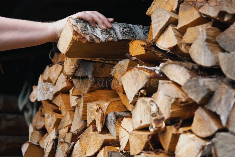 Una mano del ` s dell'uomo prende ad una betulla il ceppo scheggiato asciutto da una catasta di legna immagini stock libere da diritti