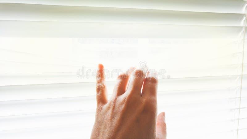 Una mano femminile sta toccando alcune veneziane dalla finestra immagini stock libere da diritti