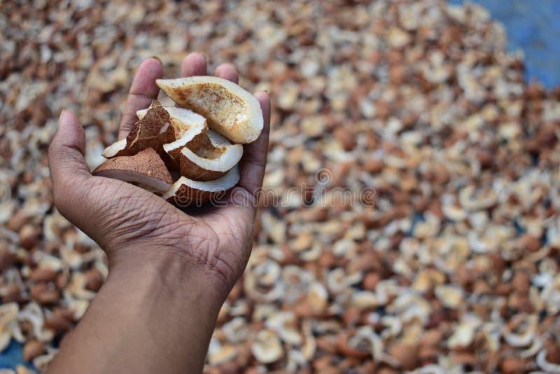 Una mano por completo de los pedazos secados del coco fotografía de archivo libre de regalías