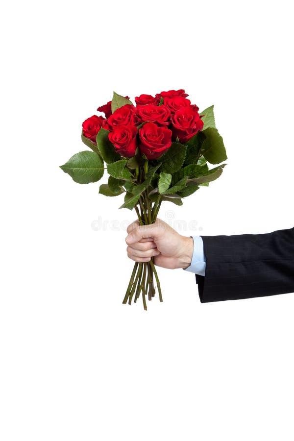 Una mano que sostiene rosas de los docena rojos en blanco fotos de archivo libres de regalías