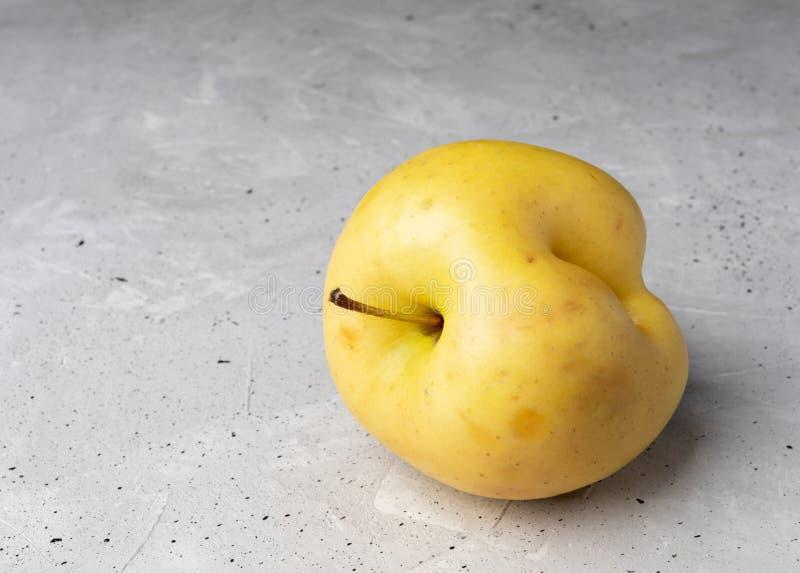 Una manzana amarilla fea con la abolladura en fondo concreto gris fotografía de archivo