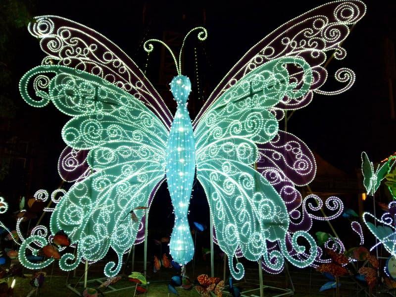 Una mariposa ligera grande estupenda imagen de archivo