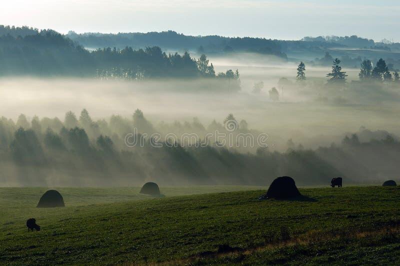 Una mattina è nel willage fotografie stock